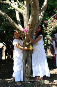 "Environmental activists hug and kiss a tree during an event called ""Marry a Tree"" in the community of San Jacinto Amilpas, Oaxaca state, Mexico on February 25, 2018. ""Marry a tree"" began as a ritual of giving thanks to Mother Earth carried out by the organization ""Bedani"", and later gave way to a symbolic wedding based on Inca customs where women and men ""marry"" trees in a rite led by Peruvian actor and environmentalist Richard Torres. / AFP PHOTO / PATRICIA CASTELLANOSPATRICIA CASTELLANOS/AFP/Getty Images"